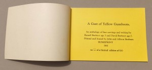 A gust of yellow gumboots page1