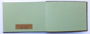 Journal A5 Ldscpe thin leather cover3